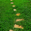The Stone block walk path in the park with green grass backgroun — Stock Photo #12084881