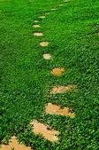 Het pad lopen stenen blok in het park met groen gras pagina — Stockfoto
