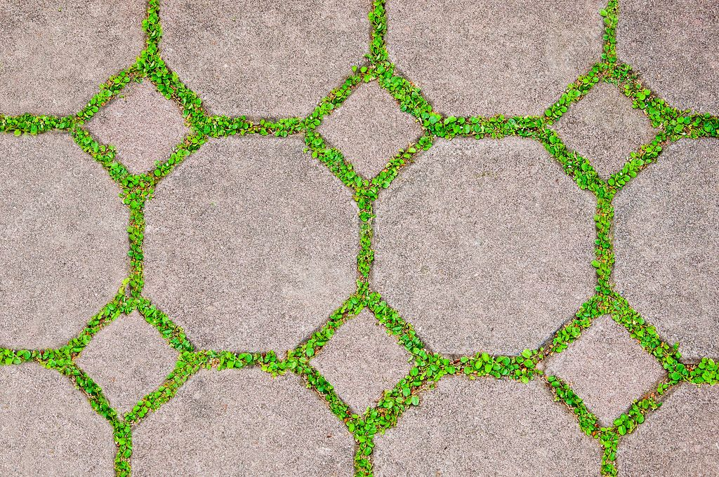 The Cement brick between green grass background  Stock Photo #12084526