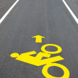 The Bicycle road sign painted on the pavement — Stock Photo #12096005