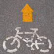 The Bicycle road sign painted on the pavement — Stock Photo #12099978