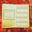 The Vintage diary isolated on rust background - Stock Photo