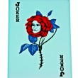 The Joker card of red rose had face women isolated on white background — Stock Photo