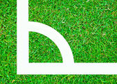 The White corner on green grass background texture — Stock Photo