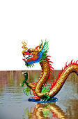 The Colorful of dragon on water background — Stock Photo