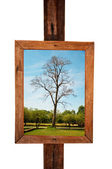 The Wood vintage frame isolated had some picture on background — Stock Photo