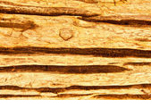 De houtstructuur — Stockfoto