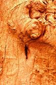 Struktura drewna — Zdjęcie stockowe