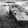 Abandoned native Thai style wood boat in black and white — Stock Photo #11382687