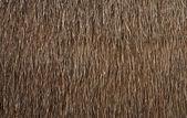 Pared de casa de campo estilo tailandés nativo hojas de — Foto de Stock