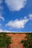 Wall and blue sky — Stock Photo