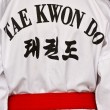 Stock Photo: Taekwondo dress