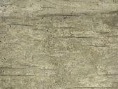 Grunge background old cracking wood — Stock Photo
