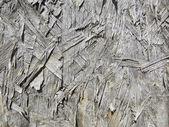 Grunge background wood texture — Stock Photo