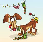 Dog in a sock — Stock Vector