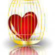 Heart in a cage — Stock Vector