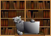 Kočka v počítači — Stock vektor