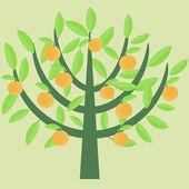 Orange tree — Stock Vector