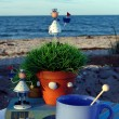 Table decoration on the beach. Sea air & adventure. — Stock Photo