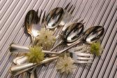 Cutlery — Photo