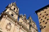 House of Shells and University of Salamanca — Stock Photo