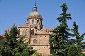 Cathedral of Salamanca — Stock Photo