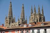 Cathedral of Burgos — Foto Stock