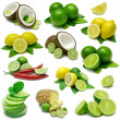 citron lime sampler — Stockfoto