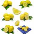 Stock Photo: Lemon Sampler