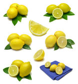 Lemon Sampler — Stock Photo