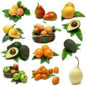 Fruit Sampler — Stock Photo