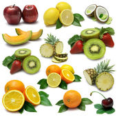 Fruit Sampler — Foto de Stock