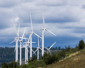 Group of wind turbines for green energy — Stock Photo