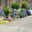 Stock Photo: Urbgarden planted along sidewalk