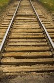 Railroad tracks and roadbed — ストック写真