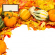 Fall border of leaves and pumpkins with card — Stock Photo