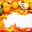 Stock Photo: Fall border of colorful leaves