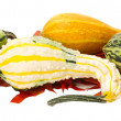 Fall border element with gourds — Stock Photo