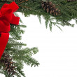 Christmas border with red bow and live pine boughs — Stockfoto