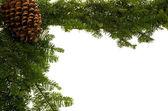 Jul gränsen med stor kotte — Stockfoto