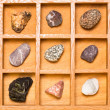 Stock Photo: Shadow box with collection of rocks
