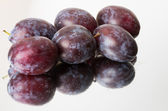 Blue plums or prunes — Stock Photo