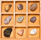 Shadow box with collection of rocks — Stock Photo