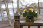 Bird house with green eco roof — Stock Photo