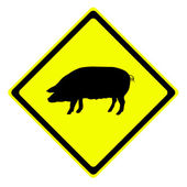 Pig in warning traffic sign — Stock Photo