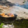 Grilling chicken — Stock Photo #12228457