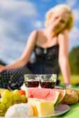 Picnic lunch — Stock Photo