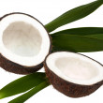 Opened coconut — Stock Photo
