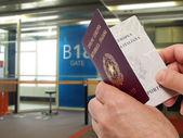 Control de pasaportes — Foto de Stock