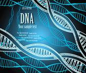 DNA strands. — Stock Vector